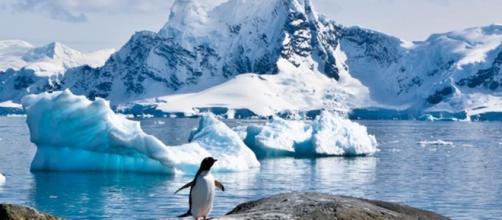 La Antártida en peligro va cediendo su territorio al mar