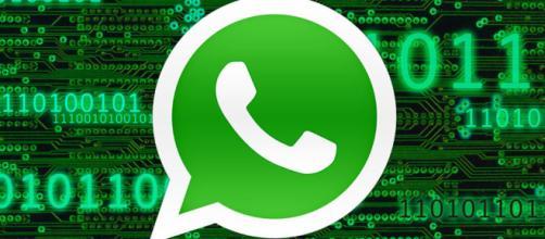 WhatsApp: ahora puedes cambiar la foto de perfil.