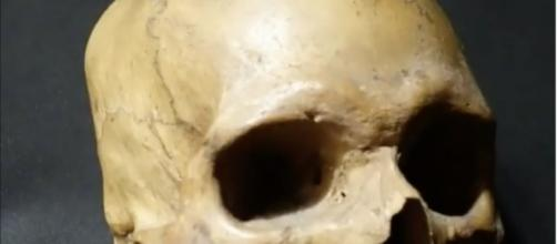 A skull found in an English pub. [image source: People/YouTube screenshot]
