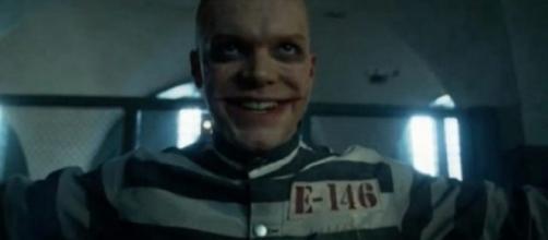 ! Jerome Valeska, con su risa maníaca, su talento para la violencia teatral y el rostro marcado, ha parecido ser un candidato para el Joker
