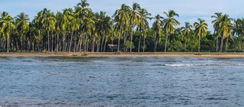 Playas - San Blas Riviera Nayarit