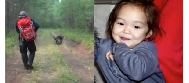 O cachorro salvou a vida dessa criança.