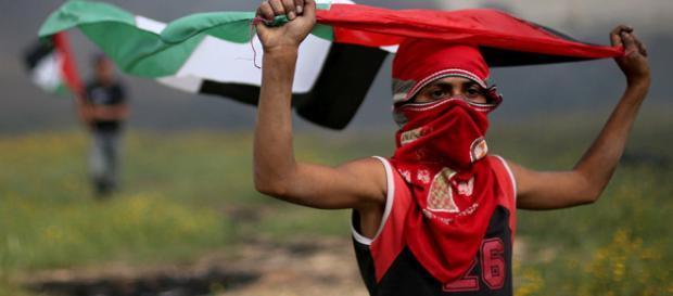 Los militares asesinan a diecisiete palestinos en la Franja de Gaza.