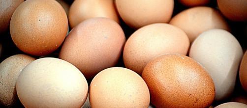 El huevo es rico en vitaminas, proteínas y minerales. Y apesar de su mala fama, no dispara el nivel de colesterol