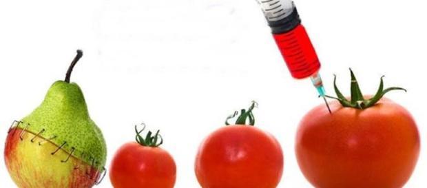 Vários dos alimentos que você tem consumido são modificados, e você não sabia