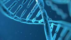 Elaborata la mappa del DNA del cancro