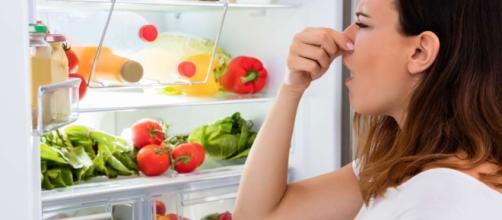 Aprende cómo eliminar los malos olores de tu refrigerador