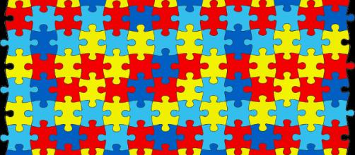 Puzzle pieces. - [Image Credit: vcnestasozinhx / pixabay]