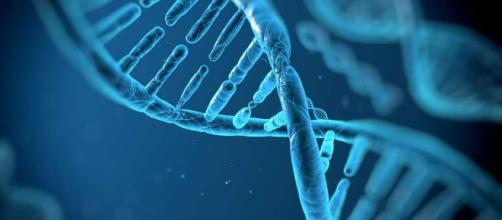 The first genetically engineered humans might not have their DNA ... - popsci.com