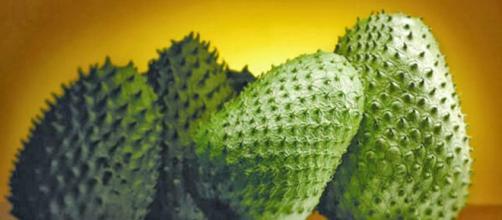 La guanábana cura diversas enfermedades y previene el cáncer - diapordiamesupero.com