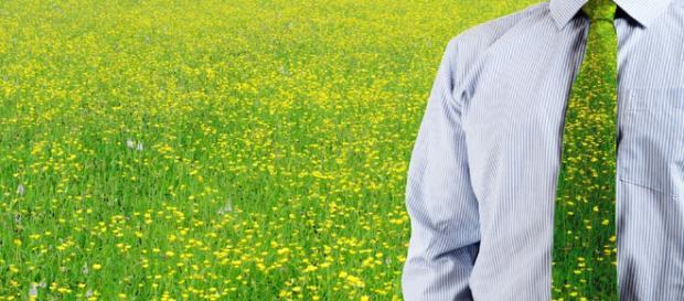 Consultoría Ambiental - Temas Ambientales - temasambientales.com