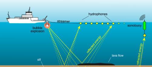Airgun: bombe per trovare petrolio sotto il mare STANNO UCCIDENDO ... - italianosveglia.com