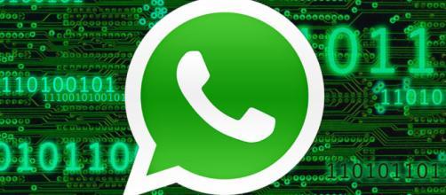 La privacidad de WhatsApp puede no ser segura.