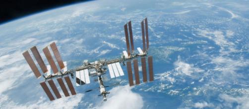 Hallan bacteria desconocida en estación espacial | Doble Llave - doblellave.com
