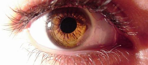 Nutrientes y vitaminas que cuidan nuestros ojos | Salud - facilisimo.com