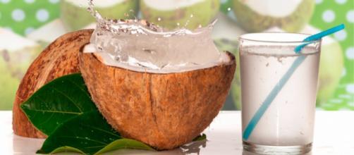 el agua de coco - kienyke.com - - kienyke.com