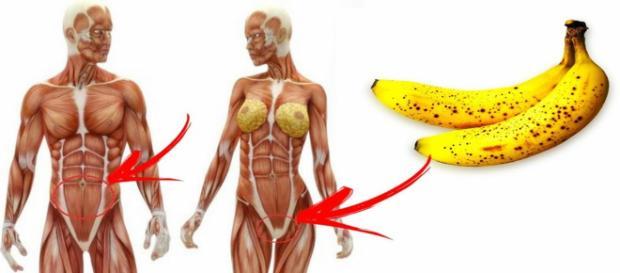Consumir banana diariamente ajuda no combate à várias doenças