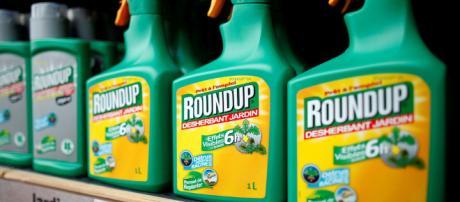 El glifosato, el herbicida de la discordia que divide a la Unión ... - elespanol.com