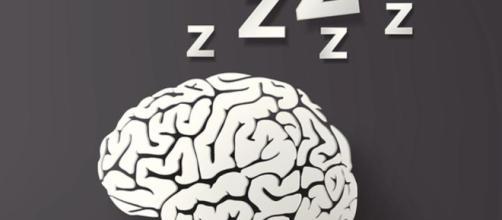 cerebro se duerme por zonas mientras estamos despiertos - lavanguardia.com