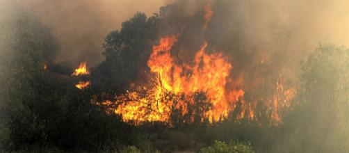 The Tomahawk wildfire destroys homes and personal property in Pendleton, Calif (Image credit – Tyler Gregory, Wikimedia Commons)