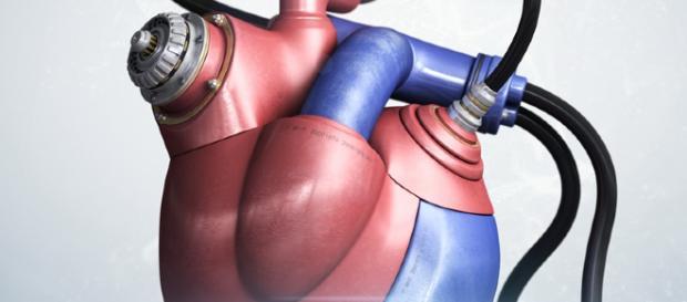 Enfermedad de la válvula cardíaca - Netdoctor.es - netdoctor.es