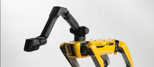 Fonte: http://www.techtimes.com/articles/227573/20180512/you-can-buy-boston-dynamics-spotmini-robot-dog-in-2019.htm
