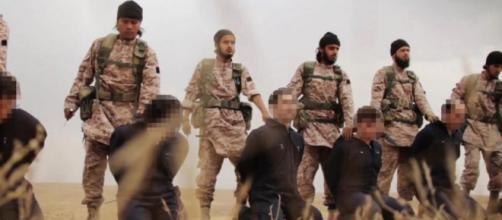 mucho más que una guerra civil: los yihadistas globales - lavanguardia.com