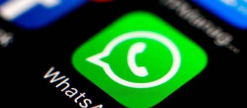 WhatsApp y una función para frenar las cadenas de mensajes.