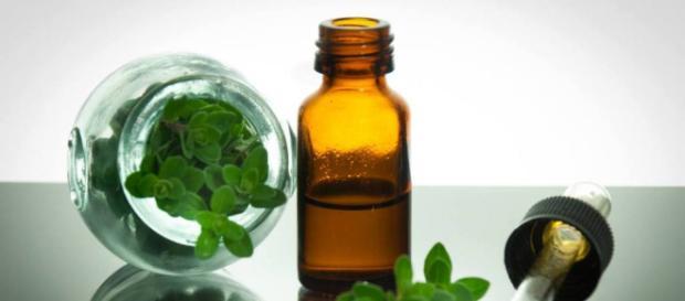 Aceite de Orégano: Contraindicaciones, Propiedades Medicinales ... - unisima.com