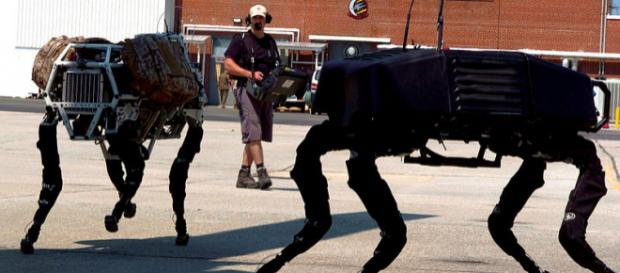 BigDog military robots (Image credit - M. L. Meier, Wikimedia Commons)