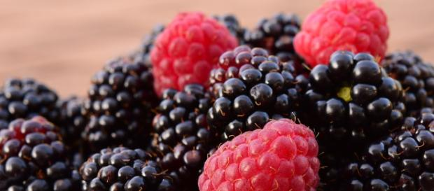 Frambuesas Moras Frutas · Foto gratis en Pixabay - pixabay.com