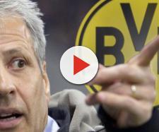 "Lucien Favre zum BVB? ""GodFavre"" oder zweiter Thomas Tuchel ... - eurosport.de"