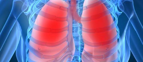 Cómo desintoxicar los pulmones - 5 pasos (con imágenes) - uncomo.com