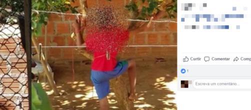 Criança amarrada em árvore pela mãe. Foto foi parar nas redes sociais (Foto/Reprodução/Facebook)