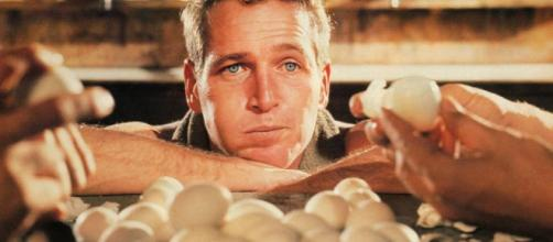 Cuántos huevos puedo comer a la semana?   BuenaVida   EL PAÍS - elpais.com