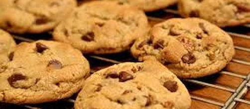 May 15 is National Chocolate Chip Day [Image: commons.wikimedia.org| - kimberlykv]