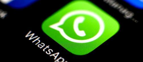 ocultar la foto de perfil de Whatsapp a quien quieras - apperlas.com