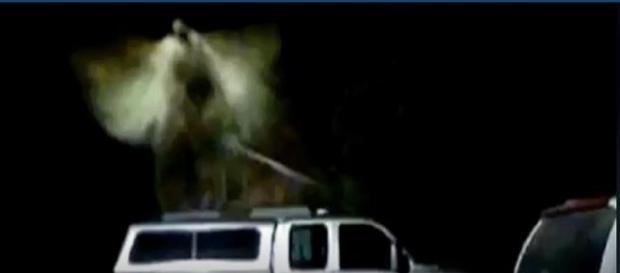 Bombeiro aposentado acredita que anjo apareceu na parte externa de sua casa (TMJ4)
