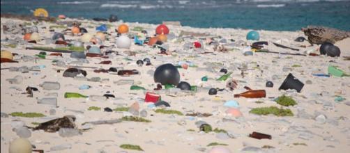 Marine debris on a beach in the Hawaiian Islands National Wildlife Refuge. - [Image credit - Susan White / Wikimedia Commons]