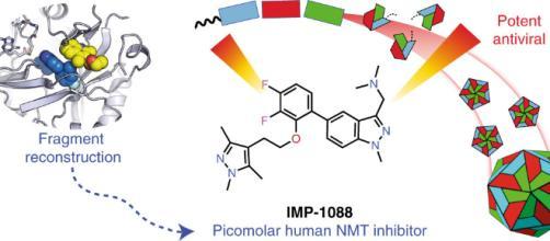IMP-1088, la molécula que combate todos los resfriados