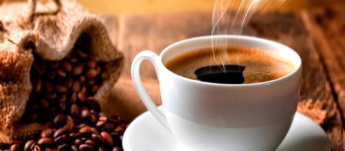 México, el mayor exportador de café | Mundo Ejecutivo - com.mx