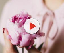galateo-dei-fiori-donna-fiore - Corato LoStradone.it - lostradone.it