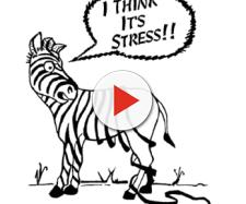 Lo stress - conosciamolo meglio - Studio Psicologia Pathos - psicologiapathos.it