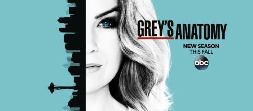 Finaliza en EEUU la 14va temporada de Greys Anatomy