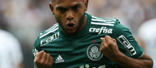 Miguel Borja, centroavante do Palmeiras