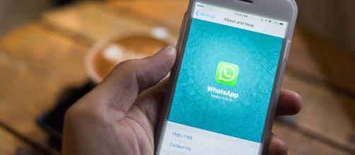 WhatsApp, attenti a non cascare nell'ultima truffa