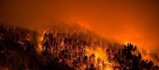 Los fuegos del parque del Xurés siguen activos tras arrasar cerca ... - elpais.com