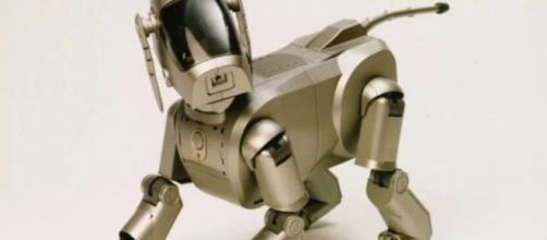perros robóticos los guardias del futuro