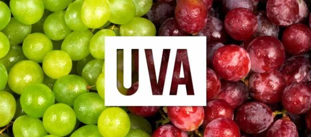 Beneficios de la Uvas - Mercola.com - mercola.com
