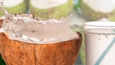 Todo lo que debes saber del agua de coco